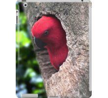 Parrot iPad Case/Skin