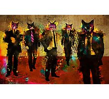 Cats in Suits Photographic Print