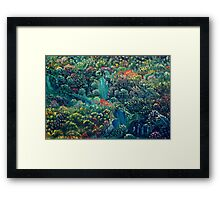 Untitled 41 Framed Print