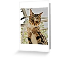 Know Your Place! Greeting Card