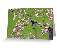 Bluebirds and Blossoms Greeting Card