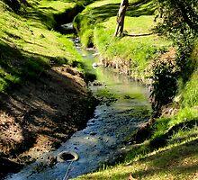 Tired Creek by Al Bourassa