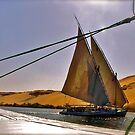 Feluccas On the Nile by Nancy Richard