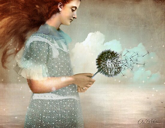Make a Wish by Catrin Welz-Stein