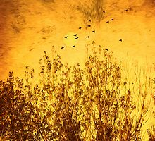 Autumn Song by Diane Schuster