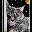 Catnap - Grey Tabby Cat  by Doreen Erhardt