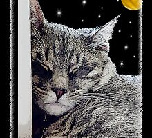 Catnap - Grey Tabby Cat  by Doreen Erhardt