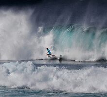 The Art Of Surfing In Hawaii 2o by Alex Preiss