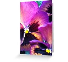 Ppppa Pansy Greeting Card