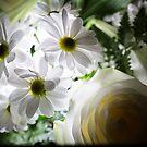 Glowing daisies by Maxim Mayorov