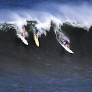 The Art Of Surfing In Hawaii 21 by Alex Preiss
