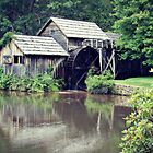 Watermill by Kirsten Day