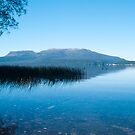 lake tarawera 4 by Anne Scantlebury