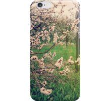 Apple Blossom Time in Leelanau iPhone Case/Skin