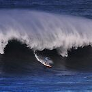 The Art Of Surfing In Hawaii 22 by Alex Preiss