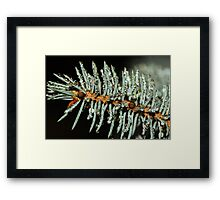 Needles and Droplets Framed Print