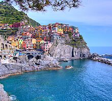 Manarola in Cinque Terre, Italy by Christy Woodrow
