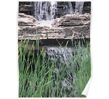Splash above the Reeds Poster