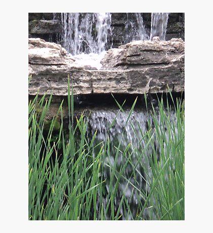 Splash above the Reeds Photographic Print