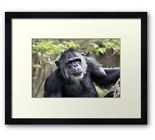 Curly Framed Print