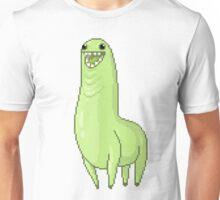 Rainbow Bunchie Unisex T-Shirt