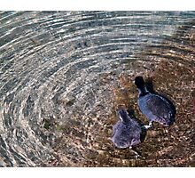 water rings Photographic Print