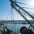 napier marina by Anne Scantlebury