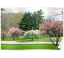 Beautiful Park Poster