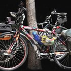 A Couple of Bicycles! by heatherfriedman