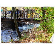 Bridge over a stream Poster