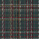 02388 Delmarva District Tartan Fabric Print Iphone Case by Detnecs2013