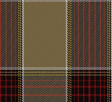 02392 Desert Fashion Tartan Fabric Print Iphone Case by Detnecs2013