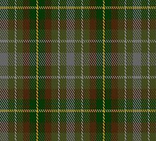 02395 Devon District Tartan Fabric Print Iphone Case by Detnecs2013