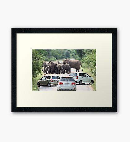 WHEN TO BACK OFF! THE AFRICAN ELEPHANT - Afrika Olifant Framed Print