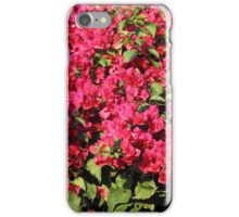 Bougainvillea iPhone Case/Skin