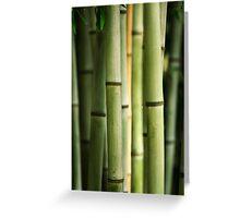 Bamboo Shoots Greeting Card