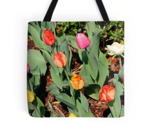 Multi-colored tulips Tote Bag