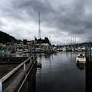 Safe Harbor  by ZWC Photography