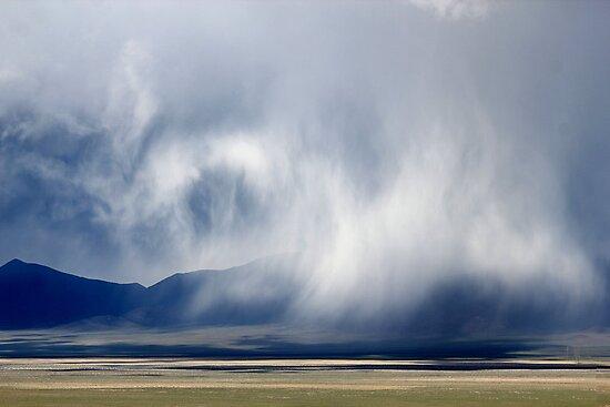 Desert Dance by Arla M. Ruggles