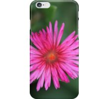 Aptenia cordifolia iPhone Case/Skin