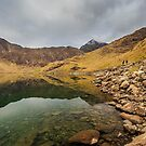 Base of Snowdon by Nicholas Jermy
