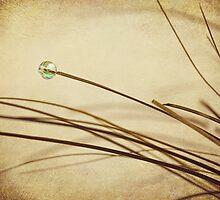 Bead by Svetlana Sewell