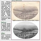 Restoration 1920c of the Apple Orchard, Tallong NSW by Baina Masquelier