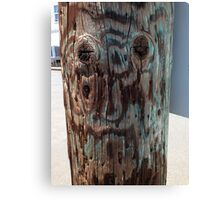 Old Man on a Post Canvas Print
