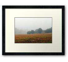 Once upon a misty morn.... Framed Print