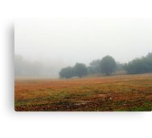 Once upon a misty morn.... Canvas Print
