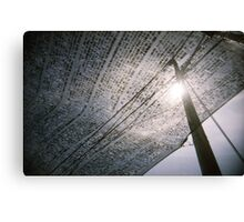Capture The Sun - Lomo Canvas Print