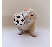 I love to play! Photographic Print