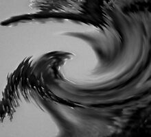 Reap the Whirlwind (black & white) by Nicola jayne