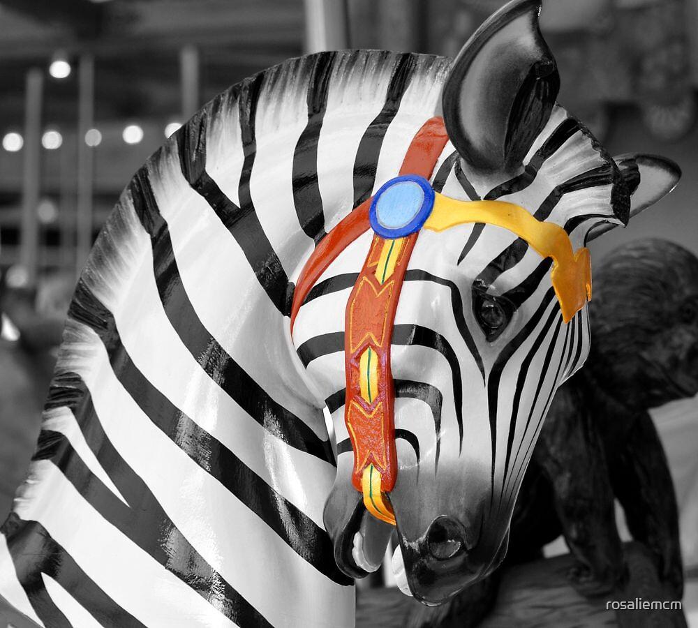 The Zebra by rosaliemcm